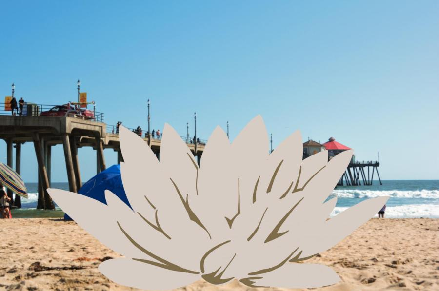 HBO's The White Lotus was the streaming darling of the summer. The show attempts to probe Americas colonial past in this satire of the tourism industry. (Staff Photo and Illustration by Manasa Gudavalli)