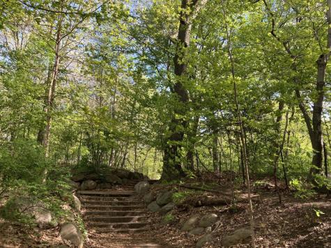 culture-parks-prospectpark