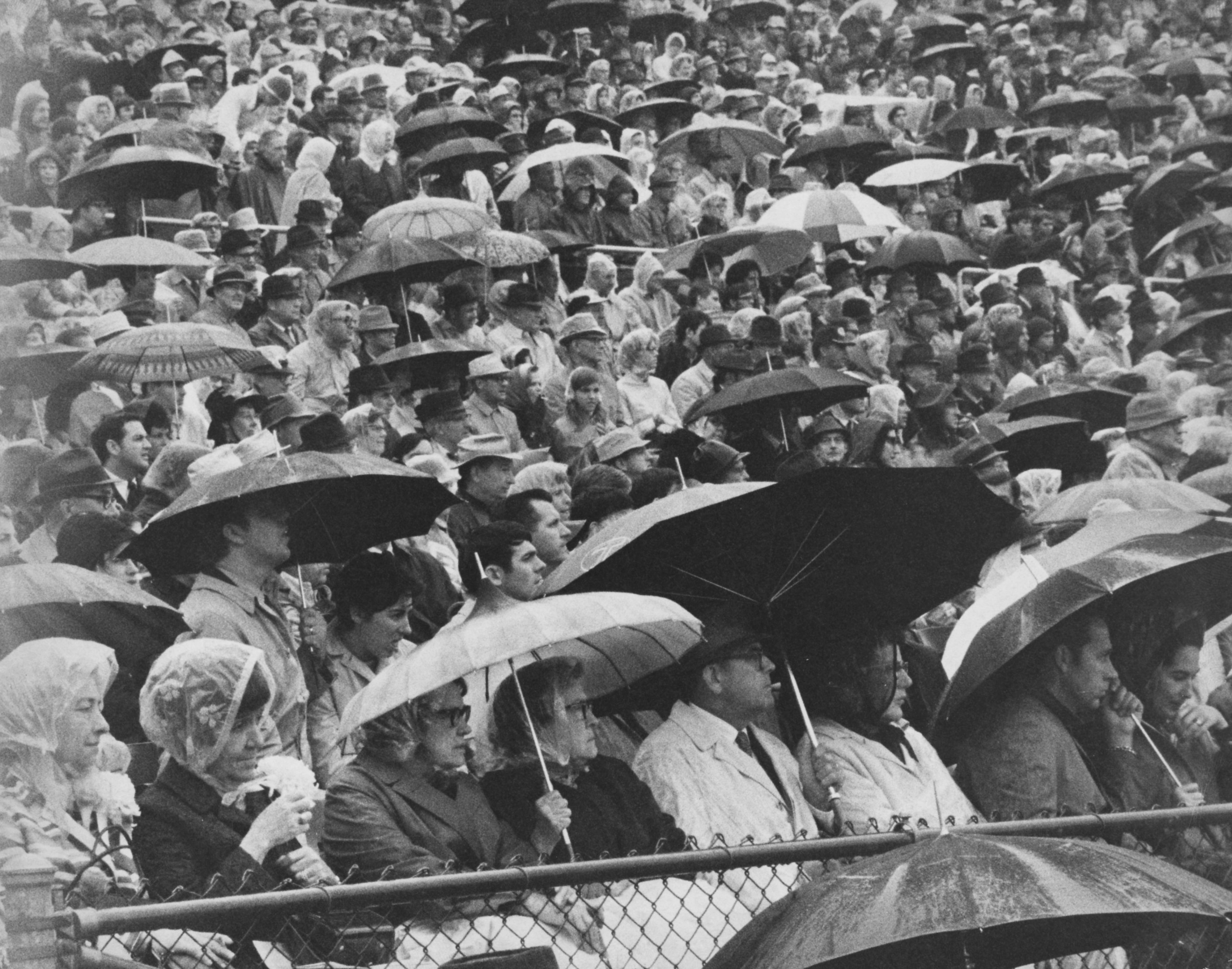 Fans Sitting In Rain At Uk Football Game