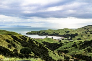 Coromandel Peninsula and its rolling green grandeur
