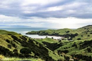 Coromandel Peninsula and its rolling green grandeur