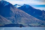 The TSS Earnslaw chugging away on Lake Wakatipu.
