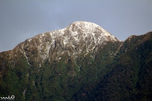 Snow-capped peaks in Doubtful Sound--such a strange juxtaposition of snow and rain forest!