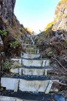 Steps to the top of Taranaki Falls