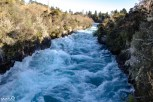 The extreme rapids and churning water of Huka Falls on the Waikato River, forced through the narrow rocks around Taupo