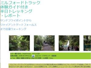 ミルフォード・トラック体験半日英語ガイドツアー詳細ページ