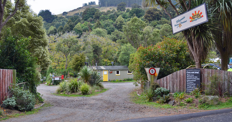 Little River Campground and Manaia Native Habitat
