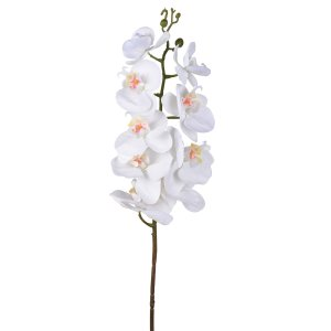 F29357-CREA  Real Touch Orchid Stem,Cream
