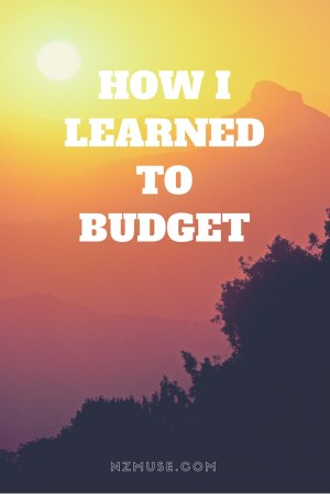 How I learned to budget