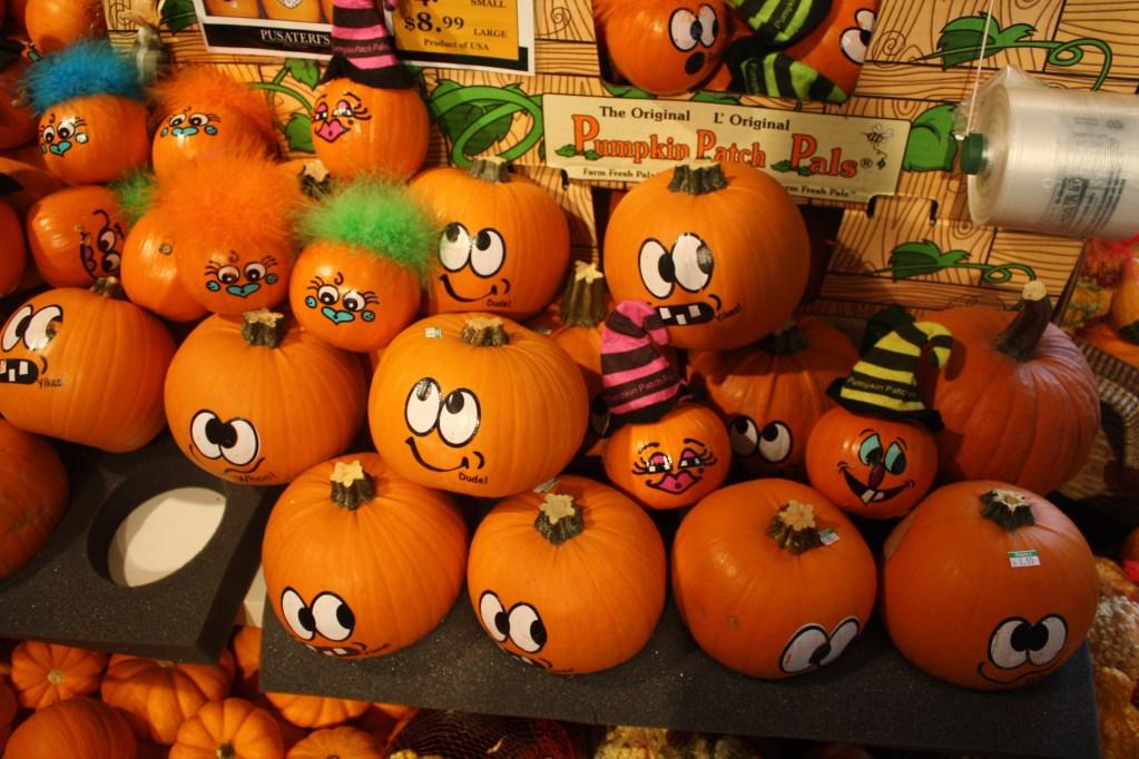 toronto pumpkins