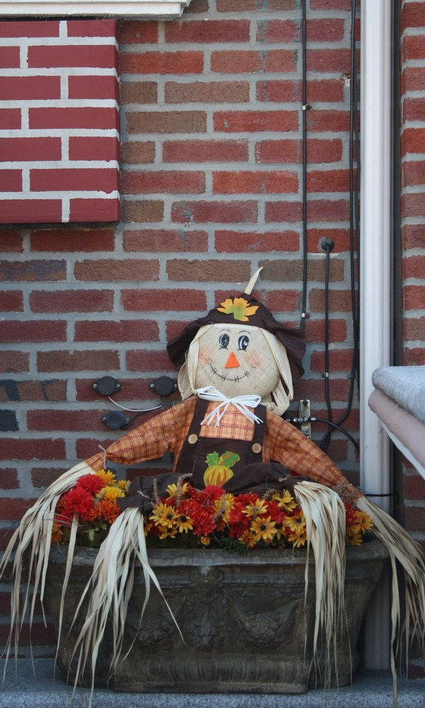 Halloween scarecrow, Astoria NY