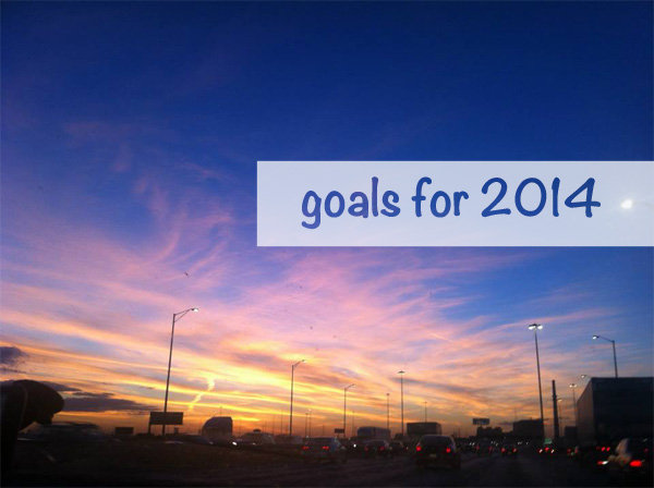 nzmuse goals for 2014