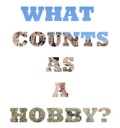 WHAT COUNTS AS A HOBBY NZMUSE