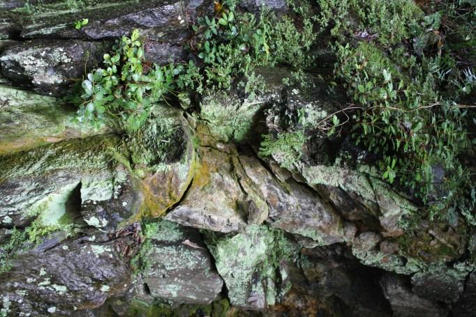 crystal cascades cairns nzmuse