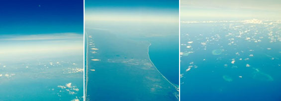 nzmuse queensland great barrier reef