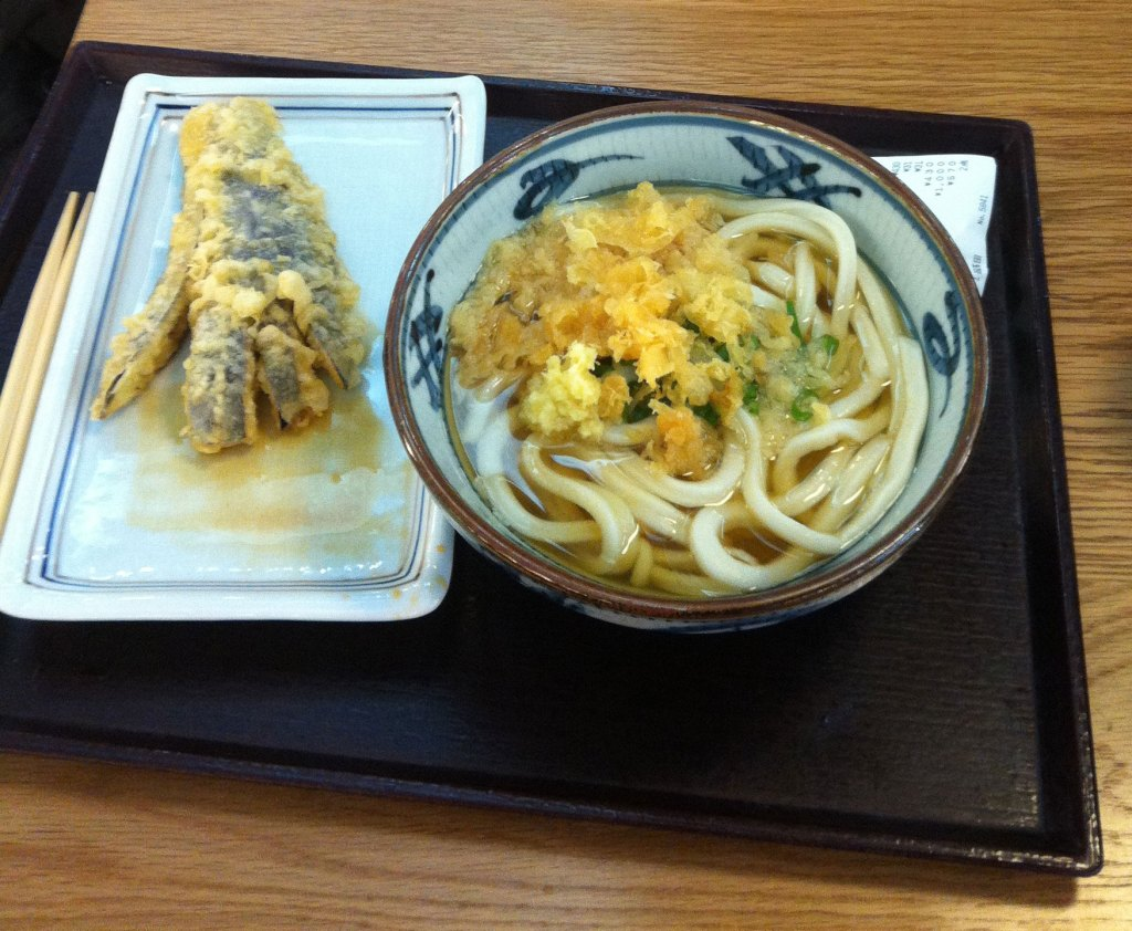 Udon noodles in Tokyo - NZ Muse