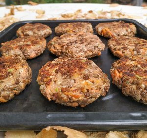 A tray of delicious sunburger patties (lentil patties with sunflower seeds)