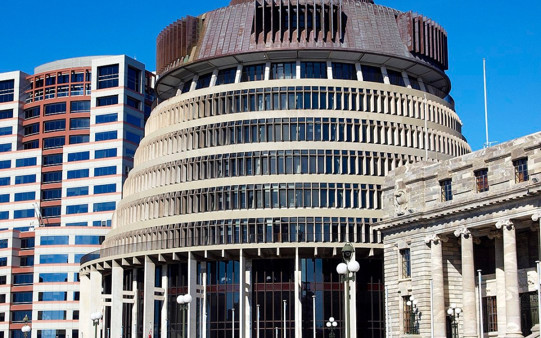 Proposed Government Procurement Rules – NZRise submission