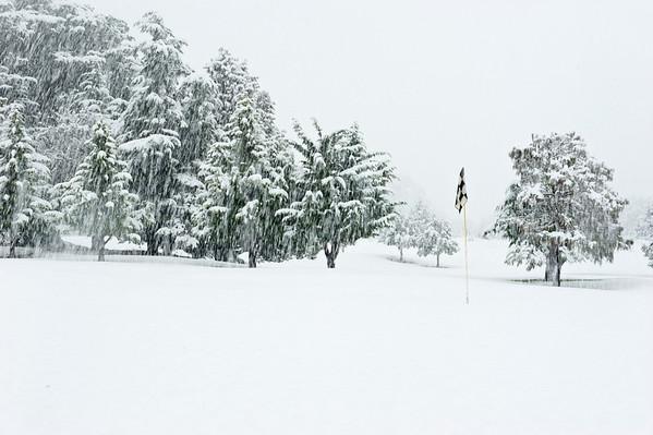 Snow_2012-06-06_13-49-42__DSC1269_©RichardLaing(2012)