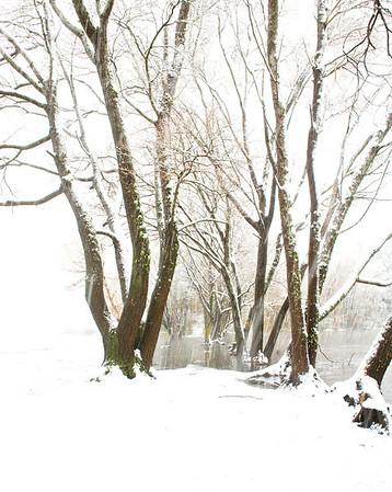 Snow_2012-06-06_14-14-12__DSC1342_©RichardLaing(2012)