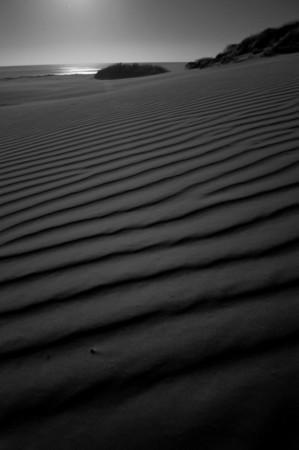 Moonlight_2012-04-07_19-20-55__DSC5773_©RichardLaing(2012)