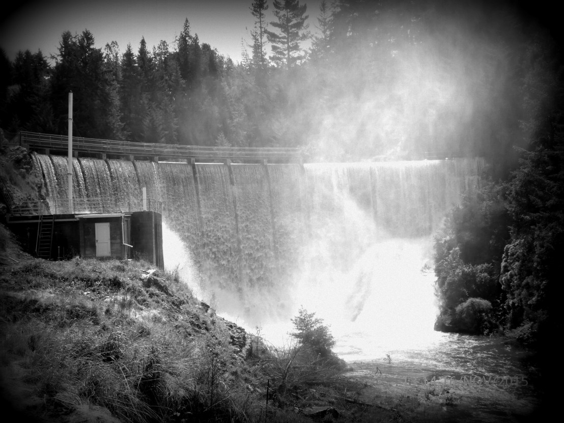 Waipori No 2 Dam | Trustpower | Hydropower | taken by Leah King
