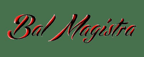 magister500x200