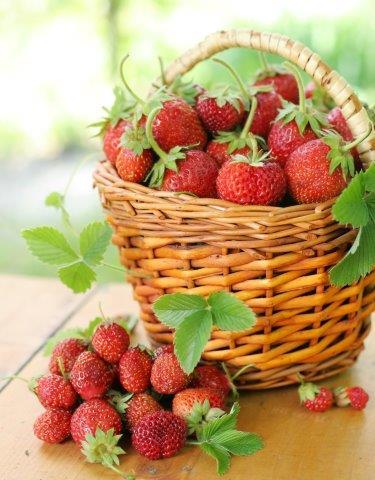 aardbeien in mandje