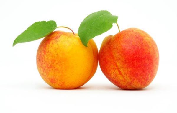 Twee abrikozen