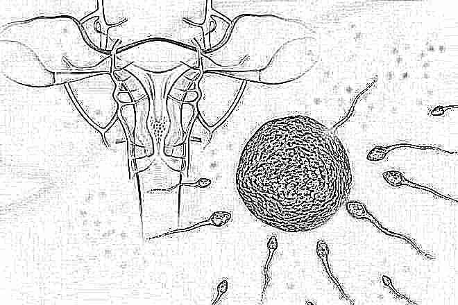 Беременность по неделям: от ощущений до развития крохи - 9