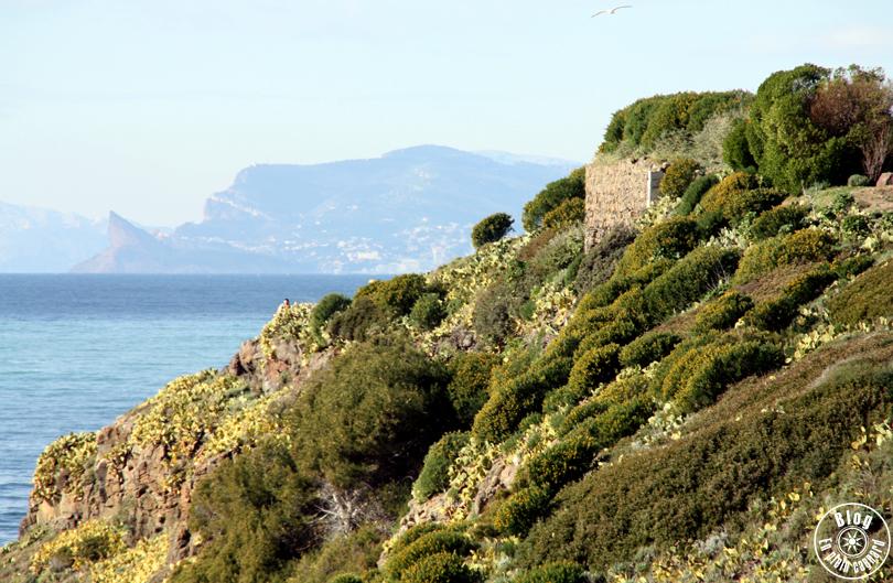 Le parc de la Méditerranée | Six-Fours-les-Plages