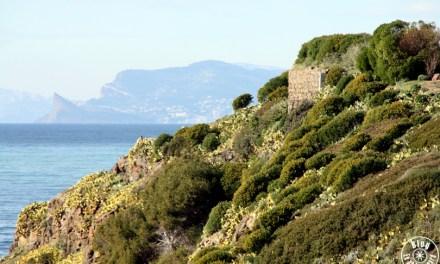 Un après-midi au parc de la Méditerranée | Six-Fours-les-Plages