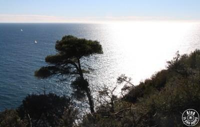 sentier littoral pradet 2