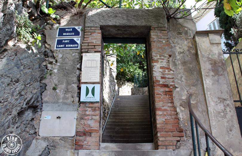 jardin saint-bernard hyères 15