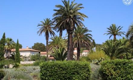 Visite du Jardin E. Lopez sur l'île de Porquerolles | Hyères-les-Palmiers