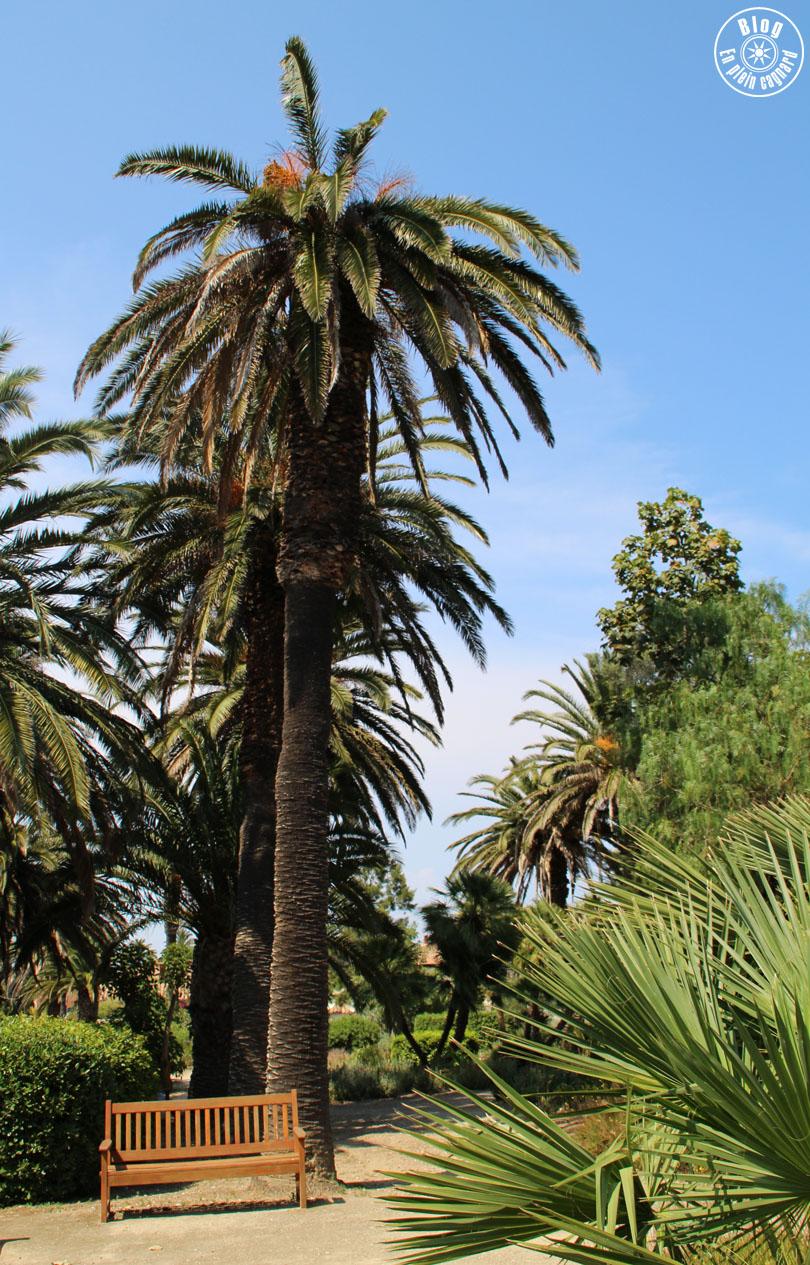 jardin_lopez_2