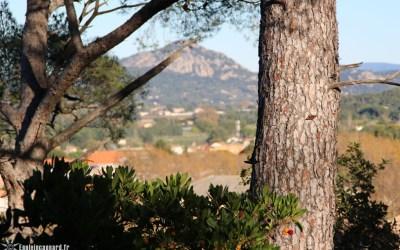 Balade au Bois de Courbebaisse | Le Pradet