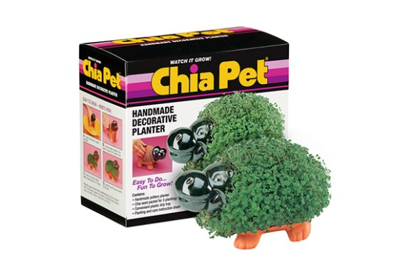 greatest as seen on tv products, chia pet