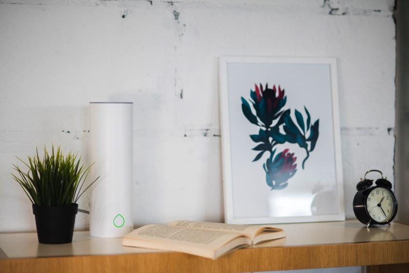 Grovio bewssert Zimmerpflanzen automatisch Engadget