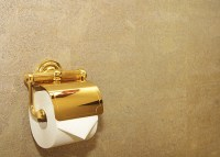 22-Carat Gold Toilet Paper Could Be Yours For 800,000