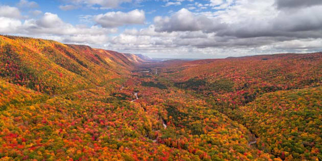 Cabot Trail Fall Colors