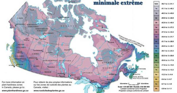 This Map Shows Why Almost Nobody Lives In Most Of Canada