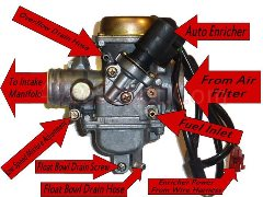 Maddog Scooter Wiring Diagram Countyimports Com Motorcycles Scooters 49cc 50cc 150cc