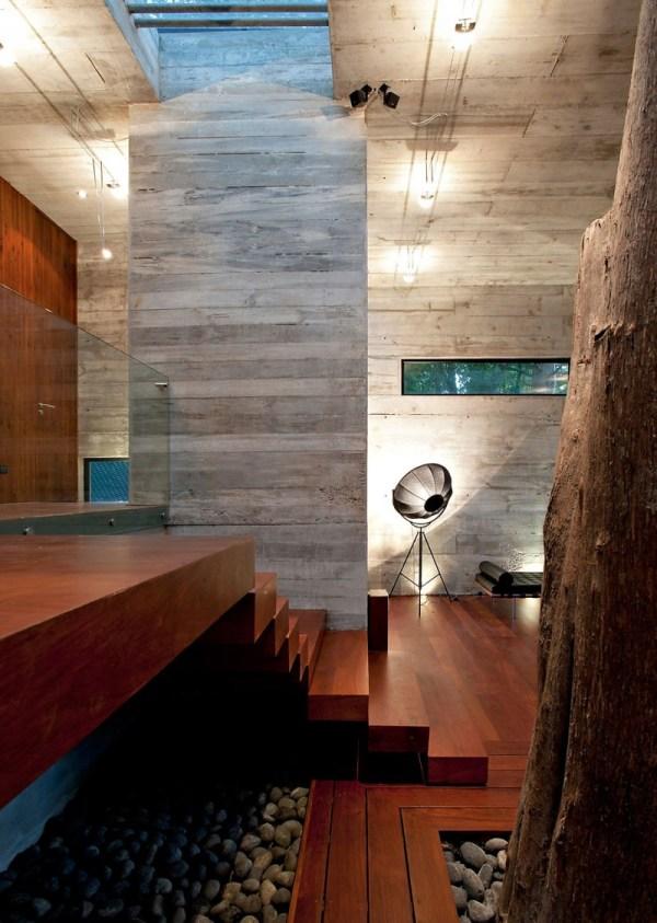 Tree In Living Room Corallo House Paz Arquitectura