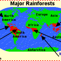 Amazon Rainforest Layers Diagram 2001 Ford Ranger Motor Tropical Rainforests Location Climate Deforestation Nice Work