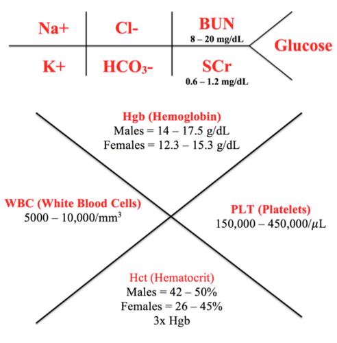 cmp lab diagram energy band of metal diagnostic tests & laboratory data interpretation flashcards | quizlet