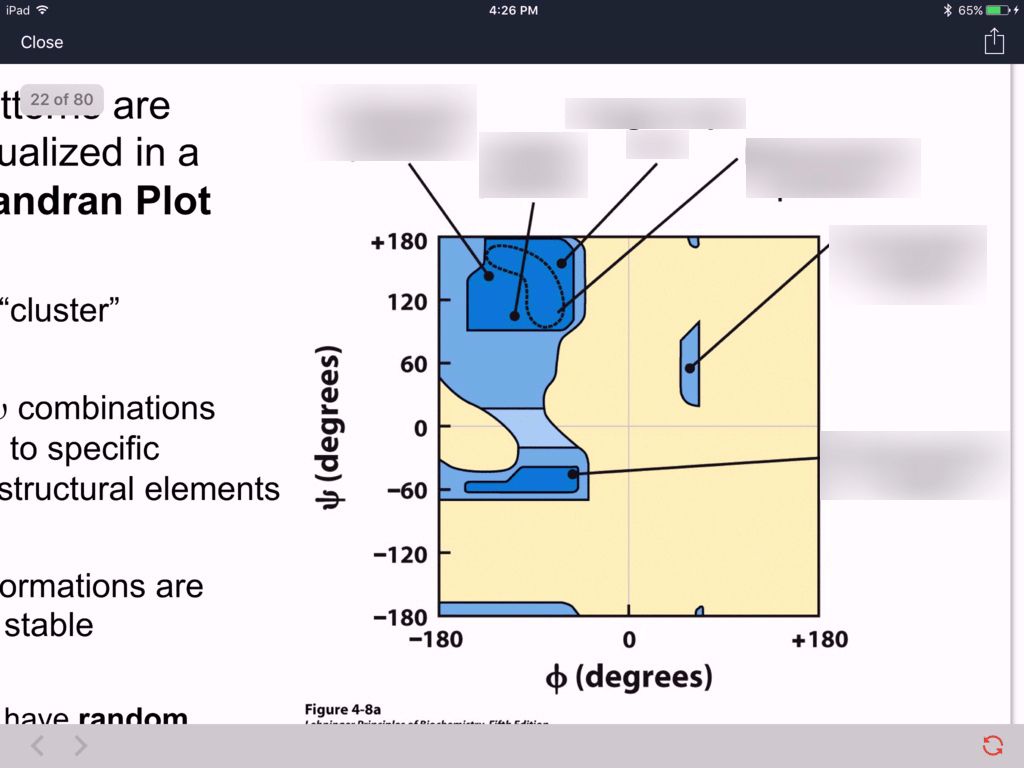 Ramachandran Plot Diagram Quizlet