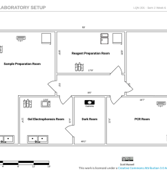 week 6 laboratory setup reagent preparation room [ 1024 x 802 Pixel ]