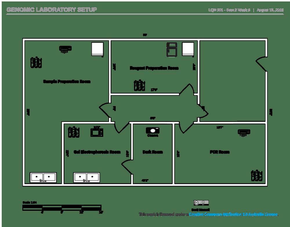 medium resolution of week 6 laboratory setup reagent preparation room