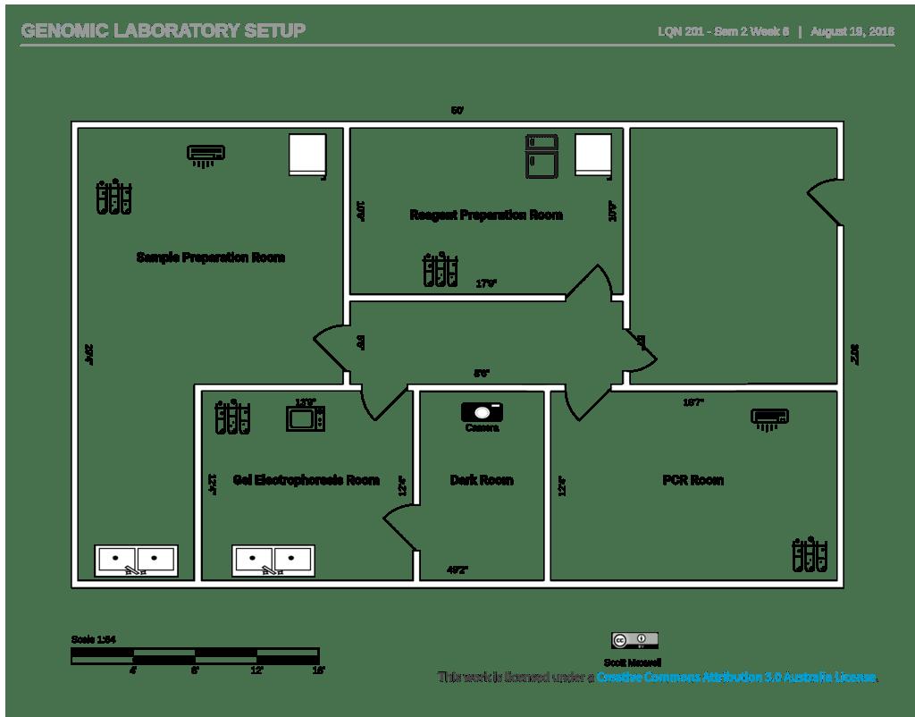 hight resolution of week 6 laboratory setup reagent preparation room